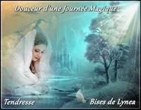 Douceur d'une journée magique tendresse bisous de Lynea