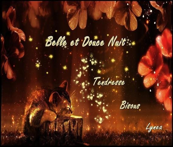 Belle et Douce Nuit Tendresse Bisous de Lynea