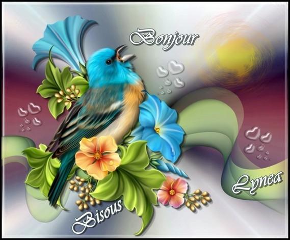 Bonjour bisous oiseau Lynea