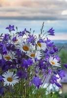 fleurs diverses mauves