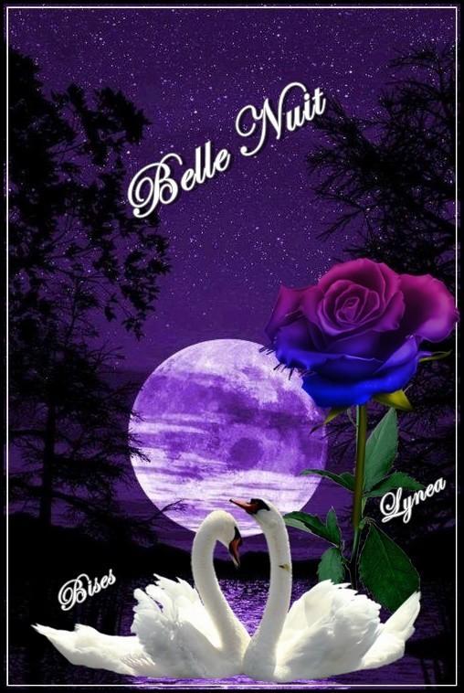 Belle nuit bises de Lynea
