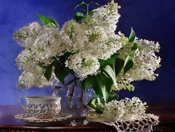 lilas vase