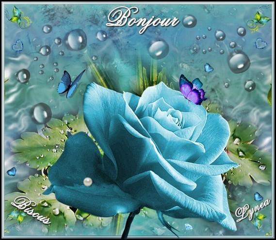 Bonjour bisous de Lynea la Rose