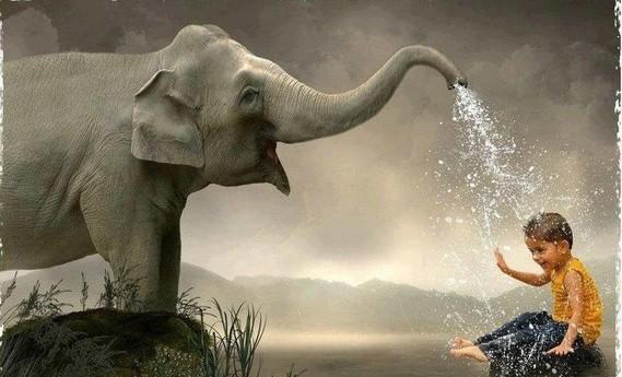 éléphant eau enfant