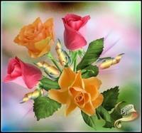 roses 4 de Lynea