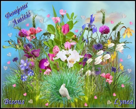 Bonjour amitié bisous de Lynea-