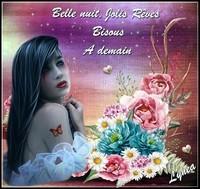 Belle nuit jolis rêves à demain bisous de Lynea