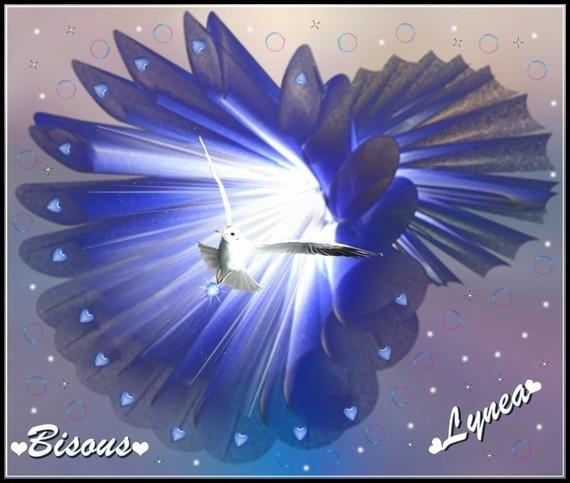 bisous de Lynea1