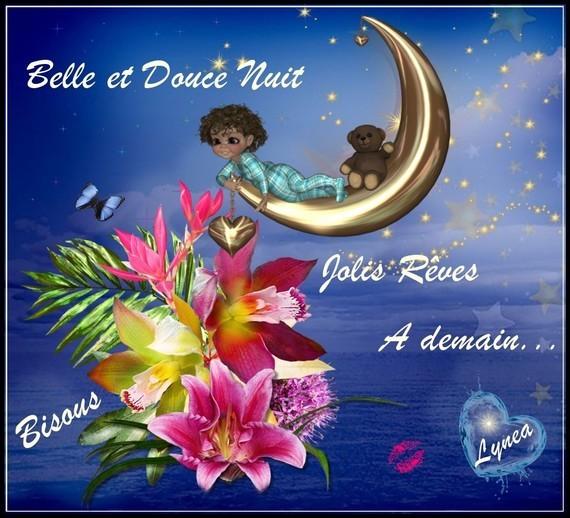 Belle et douce nuit jolis rêves à demain, bisous de Lynea