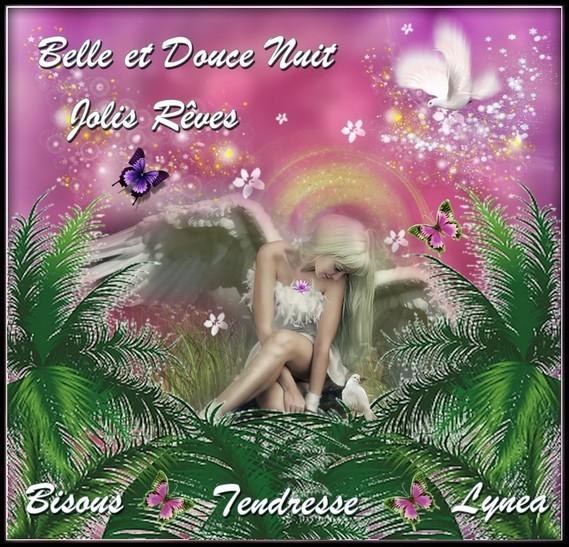 Belle et douce nuit jolis rêves bisous tendresse Lynea