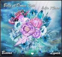 Belle et douce nuit, joli rêve bisous de Lynea