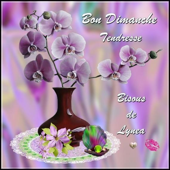 Bon dimanche tendresse bisous de Lynea - BON DIMANCHE - lynea18 ...