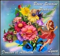 Bonne semaine tendresse bisous douceur attention Lynea