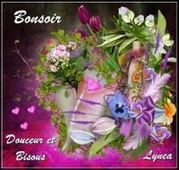 Bonsoir douceur et bisous Lynea