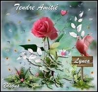 Amitié tendre bisous Lynea