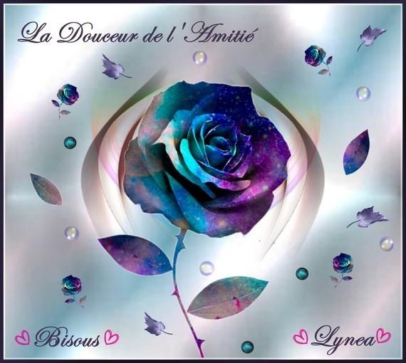 Douceur de l'Amitié bisous rose bleue Lynea