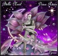 Belle nuit doux rêves bisous Lynea