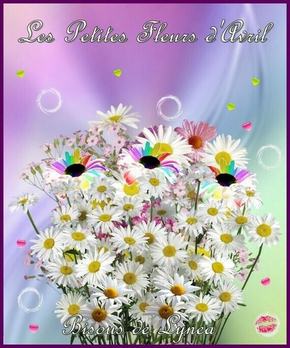 Les petites fleurs d'avril-bisous de Lynea