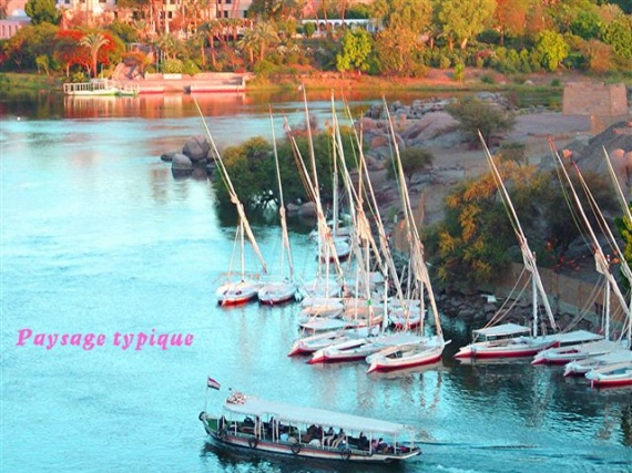 les bords du Nil