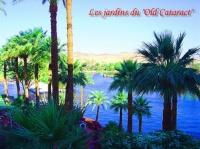 """les jardins de l'hotel """" OLD CARARACT"""""""