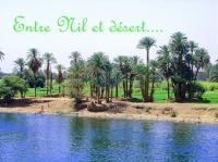 entre Nil et désert
