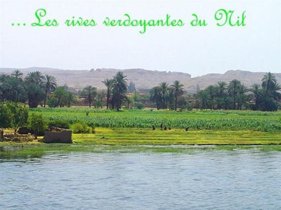 L'autre côté de la rive du Nil très verdoyant