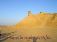 REGION DE NEFTA