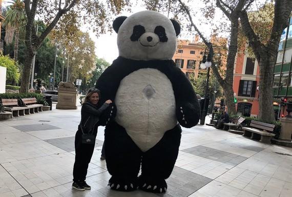 Grand Panda Petite Carole
