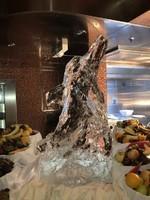 construction d'un dauphin en glace