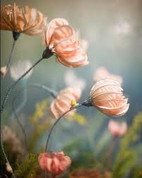fleur.2