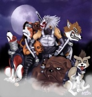 Hatake_Kakashi_with_nin_dogs