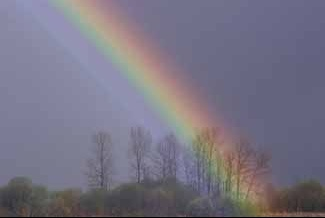 rainbow3_jpg