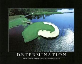 determination13