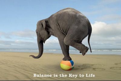 PP31157~Balance-Affiches