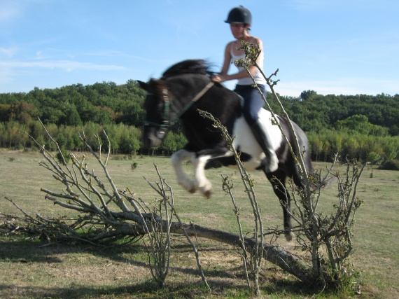 Fabriquer ses obstacles Private-category-chevaux-012-img