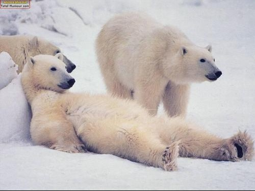 ours_relax