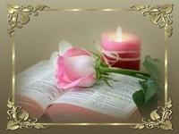 bougies roses