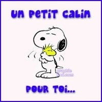 private-category-snoopy-woodstock-calin-tns0