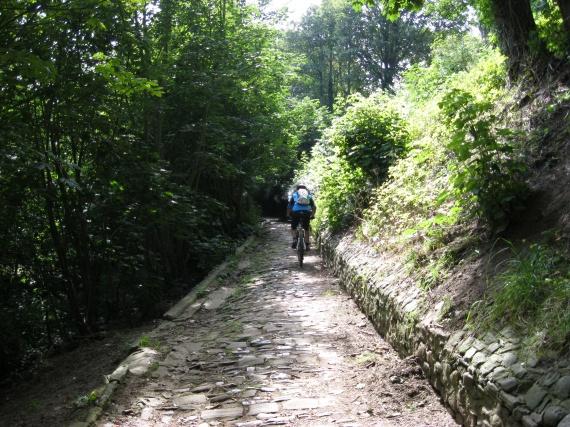 vers le sommet du Mont Cassel