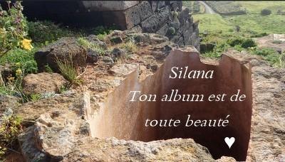4420 - Silana