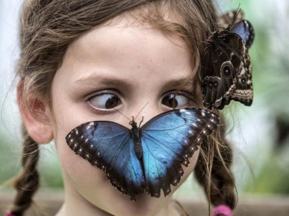 -papillon-sur-nez