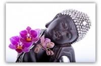 -zen-bouddha-fleur-