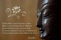 pensée zen2