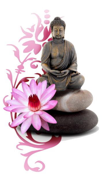 zen-attitude