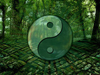 Tao-Garden-