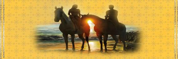 BAN Couple chevaux-