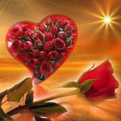 coeur roses