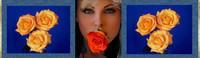 ban rose orange-