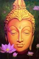 zen visage