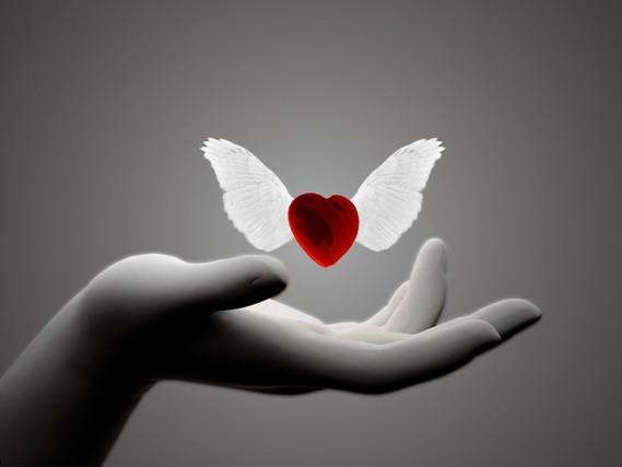 coeur main
